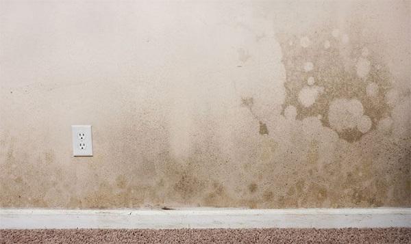 Tường nhà liền kề bị thấm