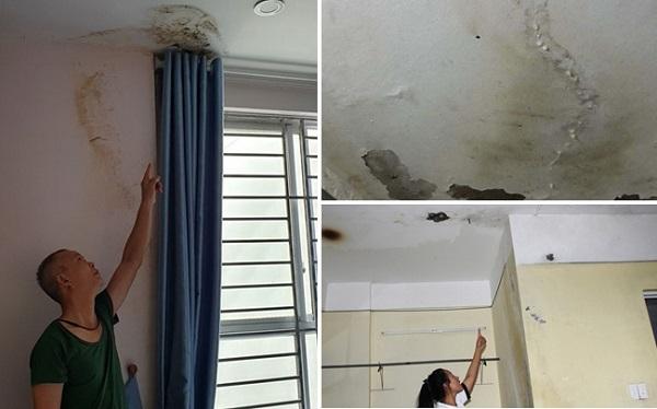 trần nhà chung cư bị thấm nước